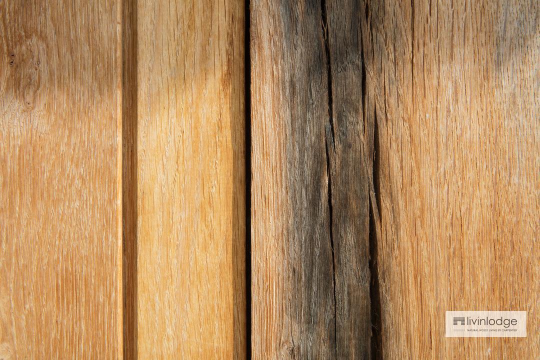 Exclusieve afwerking Livinlodge houten bijgebouwen